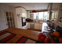 SUPER STYLISH TWO BEDROOM HOUSE IN WOOLWICH SE18 !!!!
