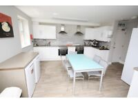 A smart single with ensuite on a quiet residential road in Wembley
