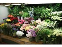 Florists & Flower Conditioners - Immediate start / An open recruitment day
