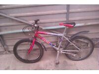 """Child's Bike - to suit 5-8years, inside leg of 20-26"""""""