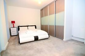 LOVELY ENSUITE DOUBLE ROOM IN A LUXURY FLAT! ALL BILLS INCLUDED!