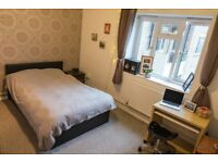 Double room to rent for a Professional (Fulham)