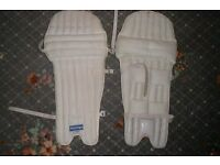 cricket pads (new)