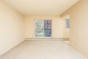 Frisco Apartments Now Renting 1 Bedroom Units Edmonton Edmonton Area image 7