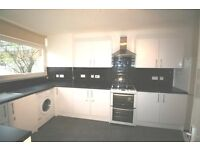 Modern 3 bedroom house & garden, recently redecorated, gsd storageSouthfields tube & shops 10 mins