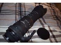 Sigma 50 -500mm Lenses