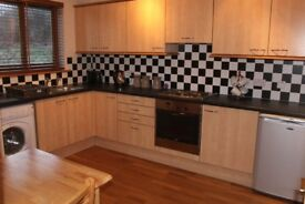 Fully Furnished Flat for Rent