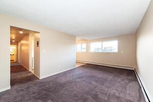 Brookside Terrace - 143 St. & 56 Ave. Edmonton Edmonton Area image 6