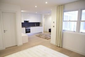 A fantastic and well-presented studio flat with private terrace/patio, short walk to tube & shops