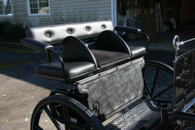 Pacific Carriage 2 wheel small pony show cart used about 4 times, black covers