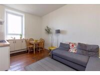 Spacious and light central flat with original features. GCH, double glazing, etc.
