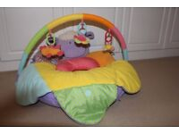 ELC Blossom Farm Deluxe Sit Me Up Cosy, Suitable for 0-12 Months
