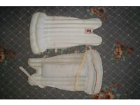 cricket pads (WK new)