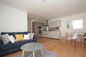 Exquisite two bedroom, two bathroom apartment available to let in Hammersmith
