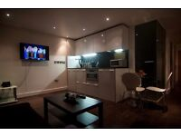 Great apartment in the city ! Short or long stay ! Great views ! / gym / swimming pool / sauna !