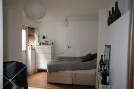 2 Bed Victorian flat with private garden! - South Island Place
