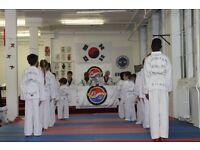 Taekwondo classes; Adult, Children, Parent & Toddler-Peckham Rye