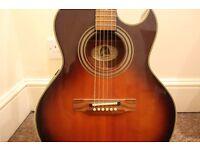 Semi-Acoustic Guitar for Sale! Epiphone Sunburst PR5E/VS