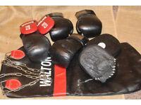 Punch bag & Gloves