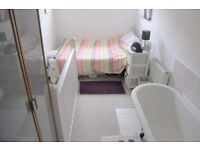 Huge One Bed Flat, City Centre Location, Oriental place, BN1 2LL