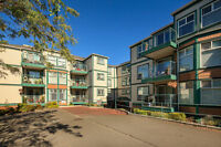 Saanich East 2 bedroom Condo