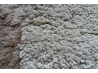 Good Quality Heavy Rug(s) for Sale - Only £50 each