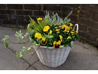 Flower baskets & pots fully planted - ready to decorate your garden or patio!