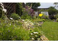 Garden Designer- specializing in low maintenance, attractive urban gardens.