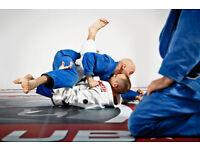 Brazilian Jiu-Jitsu Classes for Beginners