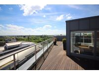 A 5 STAR LUXURY SPACIOUS HIGH SPECIFICATION TWO DOUBLE BEDROOM TWO BATH PENTHOUSE APARTMENT