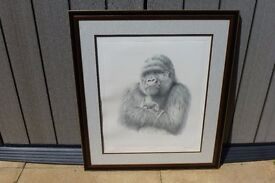 """Baby Love "" by the celebrated artist Peter Hildick. Such a tender portrait of a Gorilla baby & Mum"