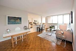 Newly Renovated 2 Bedroom Apt for Rent Lawrence Ave. East & DVP!