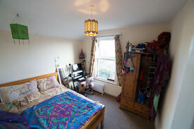 Bright Double in Ashley Down £100 pw