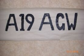 A19 AGW number plate
