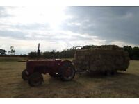 Meadow Hay - Small Bales, ideal for horses, ponies, pets.