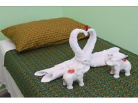 Thai Massage at the Gym in Woodford Green
