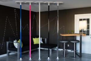 Professional Fitness Dance Pole
