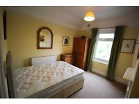 Double room within professional house share