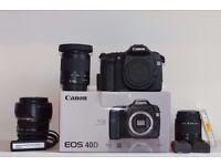 Canon 40D Digital SLR Camera with 3 lenses