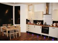 TOP QUALITY ONE DOUBLE BEDROOM PATIO FLAT SW2 -AVAILABLE 15/09