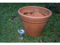 terracotta plant pot large £6 cb1 collect