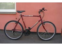 Gents Mountain Bike Large 23.5 Inch Hand Built Frame New Rear Bakes & Pedals Can Deliver If Local