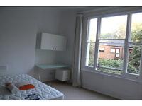 Spacious one bedroom flat in finsbury park N4