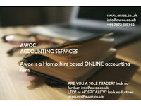 Professional friendly accountant, provide bookkeeping service, TAX returns and payroll