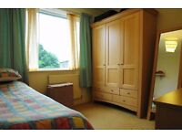 Charming flat in North London: double bedroom for you only !