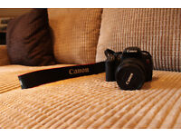 DLSR camera: Canon EOS Rebel T5i with 18-55mm and 75-300mm lenses