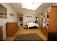 Very spacious studio flat with separate kitchen and garden