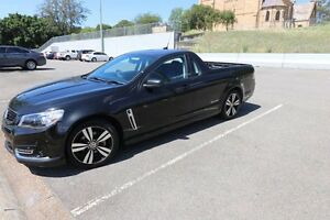 2014 vf sv6 storm Denman Muswellbrook Area Preview