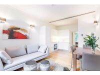 LUXURY 2BEDROOM APARTMENT IN CENTRAL LONDON FOR HOLIDAYS - MEDIUM/SHORT TERMS - from £150 per night