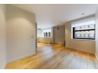 One bedroom flat moments from Vauxhall / Pimlico